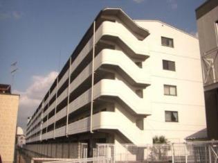 高田市 徒歩6分 5階 2LDK 賃貸マンション