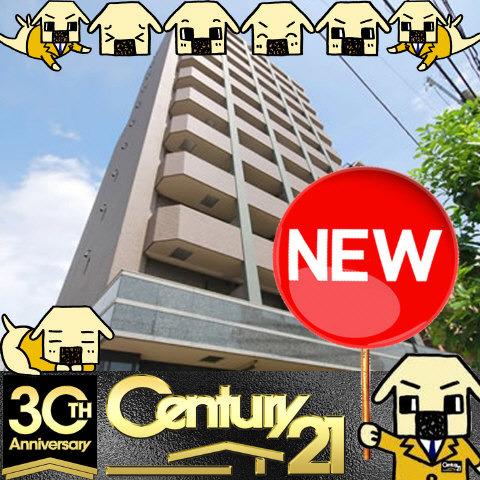 太子橋今市 徒歩13分 6階 1K 賃貸マンション