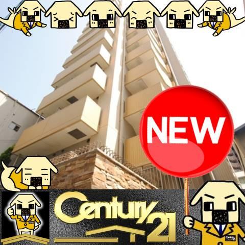 渡辺橋 徒歩14分 7階 1K 賃貸マンション