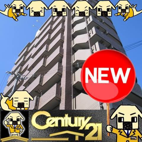 姫島 徒歩2分 9階 1R 賃貸マンション
