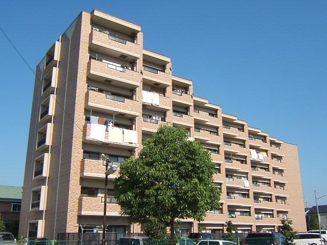 三室戸 徒歩16分 6階 3LDK 賃貸マンション