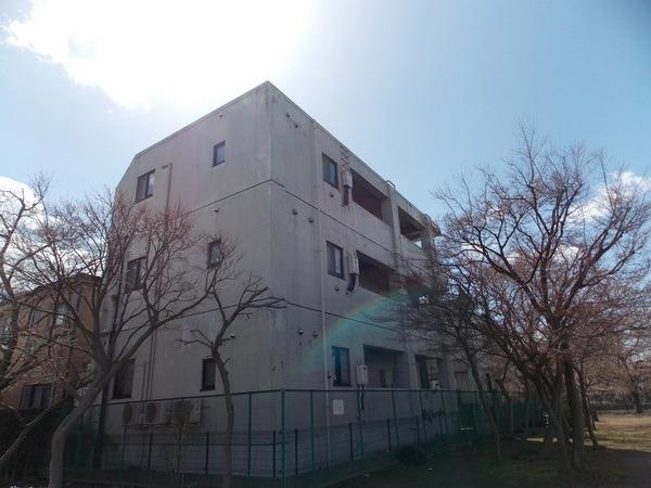 新田 徒歩31分 1階 1K 賃貸マンション
