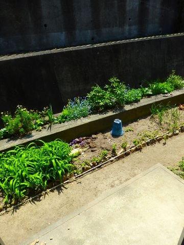 第二廣田シティハイツ 賃貸アパート