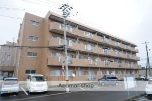 中野栄 徒歩6分 4階 3DK 賃貸マンション