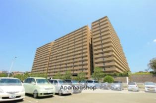 朝倉街道 徒歩11分 10階 2LDK 賃貸マンション