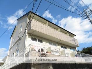 ピュアⅡ 1階 1K 賃貸アパート