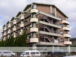 キャッスル京都南 2階 1K 賃貸マンション