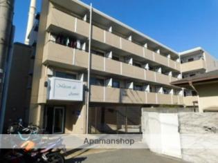 メゾン・ド・アヴニール1階1R 賃貸マンション