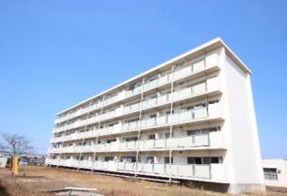 ビレッジハウス大和Ⅱ1号棟 5階 2LDK 賃貸マンション