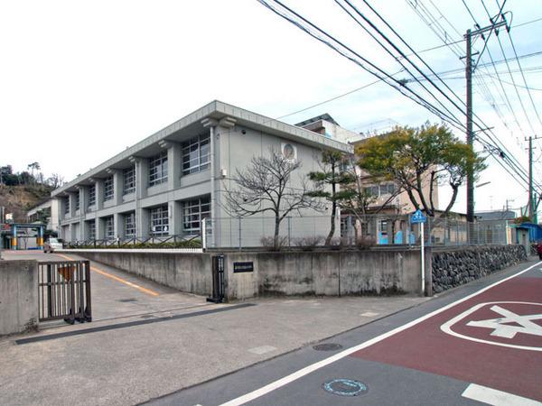 現地周辺藤沢市立片瀬小学校 430m