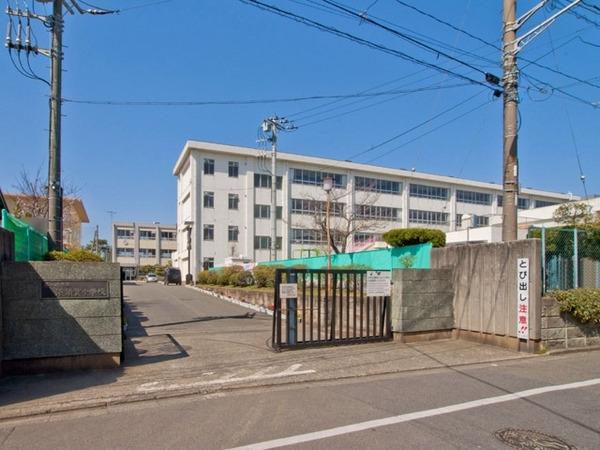 現地周辺茅ヶ崎市立浜須賀中学校 976m