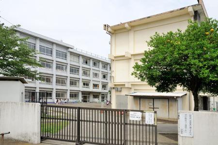 現地周辺藤沢小学校 745m