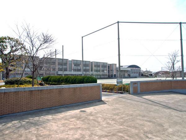 現地周辺藤沢市立片瀬中学校 697m