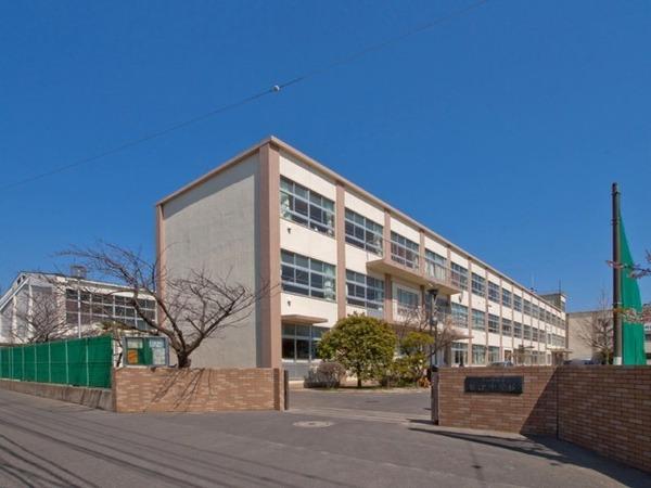 現地周辺茅ヶ崎市立松浪中学校 604m
