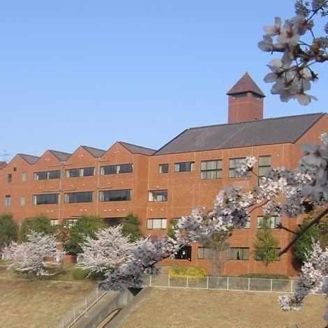 その他その他:文教大学湘南キャンパス