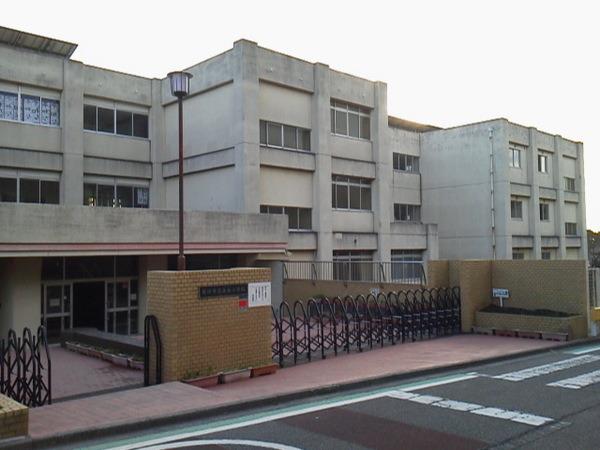 現地周辺藤沢市立高谷小学校 1329m