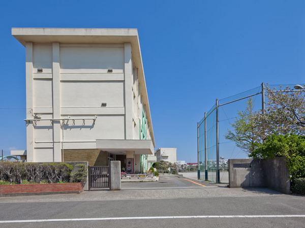 現地周辺藤沢市立高浜中学校 696m