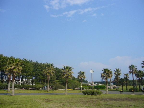 その他その他:辻堂海浜公園