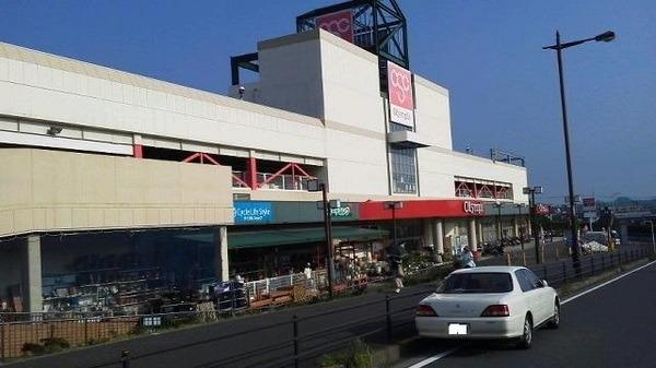 現地周辺Olympic藤沢店 986m