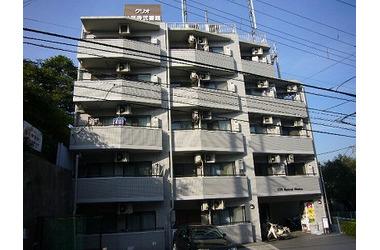 クリオ妙蓮寺弐番館4階1R 賃貸マンション