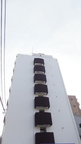 野田 徒歩6分 7階 1R 賃貸マンション
