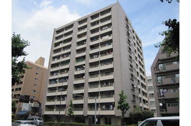 ウィスタリアマンション板橋志村/東京都板橋区東坂下2丁目10-7