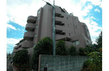 国領 徒歩8分 2階 3LDK 賃貸マンション