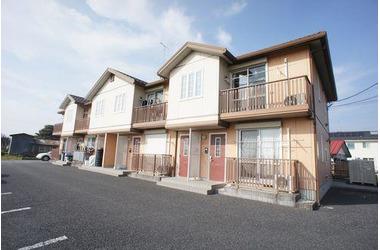 仁井田 徒歩5分 2階 2LDK 賃貸アパート