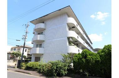 三郷 徒歩8分 4階 2DK 賃貸マンション