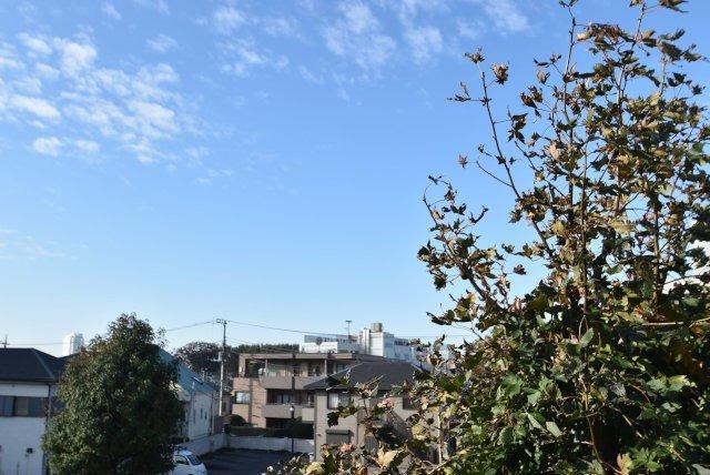 ヴェルト上野毛/東京都世田谷区上野毛4丁目39-8