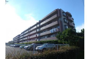 マグノーリエ青葉台 3階 3LDK 賃貸マンション
