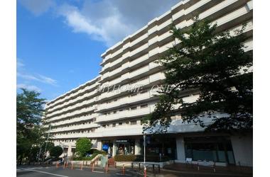 宮崎台プラザビル 8階 3LDK 賃貸マンション