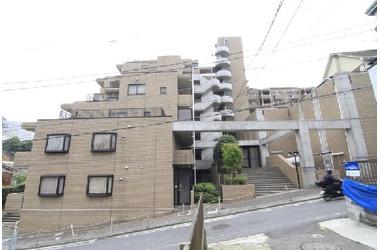 グランドベイヒルズ横浜 / 神奈川県横浜市南区三春台