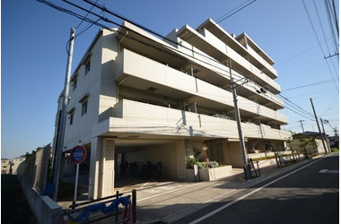 サンクレイドル東武練馬弐番館/東京都板橋区徳丸4丁目