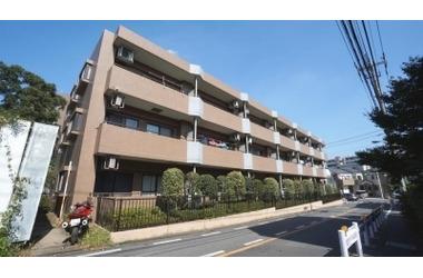 サンハイツ成増/埼玉県和光市白子3丁目
