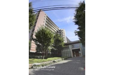 志木の杜レジデンス 8階 3LDK 賃貸マンション