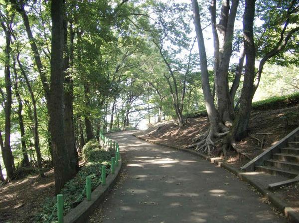 現地周辺緑町公園 1129m