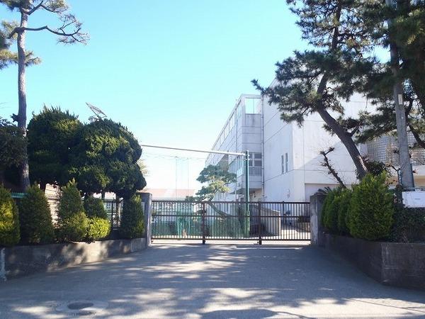 現地周辺茅ヶ崎市立松浪小学校 507m