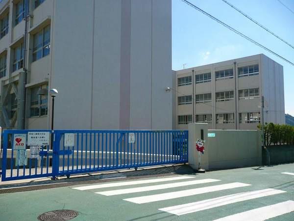 現地周辺神戸市立小部東小学校 585m