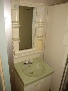 その他コンパクトで使いやすい洗面所