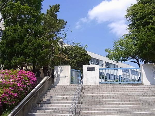 現地周辺鶴川第四小学校