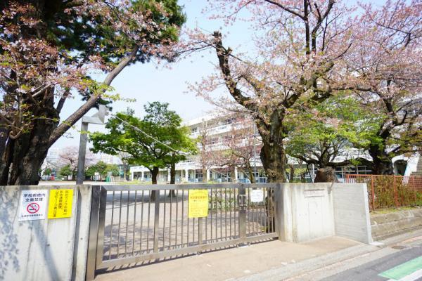現地周辺目の前には小学校がございます。校庭の緑が借景となっており爽やかで綺麗です。