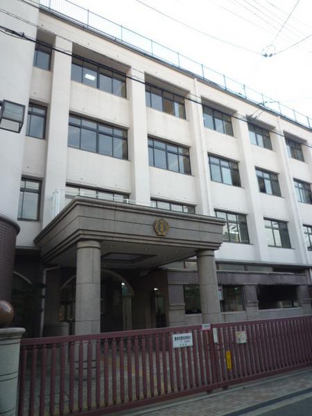 現地周辺大阪市立中泉尾小学校 556m