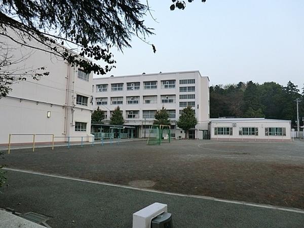 現地周辺横浜市立岡津小学校 230m