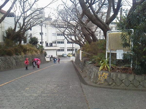 現地周辺藤沢市立大越小学校 1697m