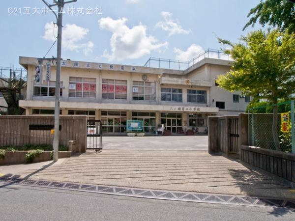 現地周辺松戸市立八ケ崎第二小学校 640m