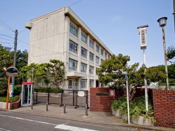 現地周辺藤沢市立天神小学校 1189m