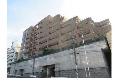 石川町 徒歩8分 8階 3LDK 賃貸マンション