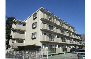 ウェルストンMT 4階 3DK 賃貸マンション