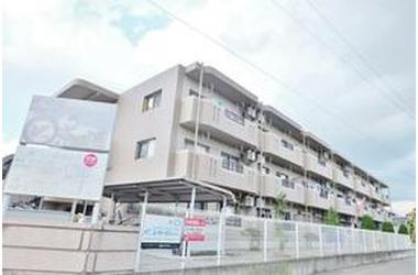 林マンションF 3階 2LDK 賃貸マンション